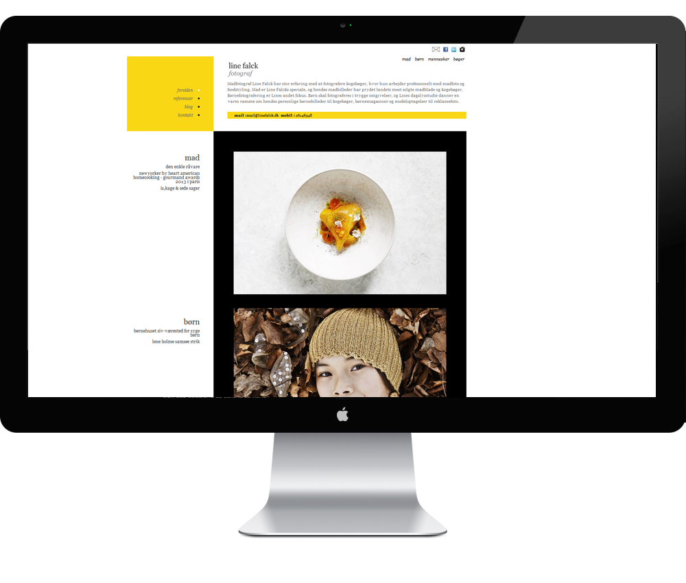 Webdesign Line Falck